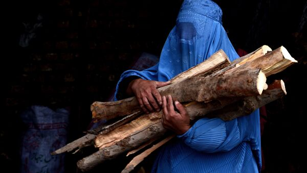 In this photograph taken on February 23, 2015, a burqa-clad Afghan woman carries chopped logs after buying them at a firewood yard in Herat - Sputnik International