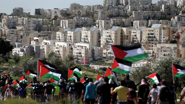 Palestinian protestors walk with their national flag during a demonstration on a hill in the West Bank village of Bilin in front of the Israeli settlement of Modiin Illit (background) on February 27, 2015 - Sputnik International