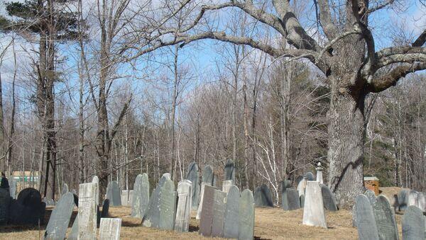 Old Cemetery - Sputnik International