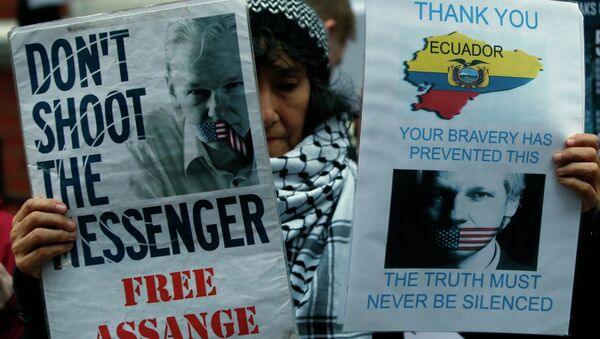 A demonstrator holds up placards as she protests outside the Ecuadorian Embassy in London. - Sputnik International