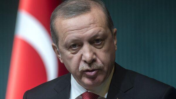 President of Turkey Recep Tayyip Erdogan - Sputnik International