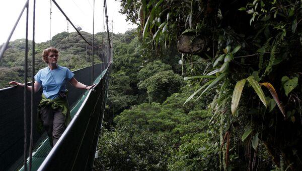 Monteverde Cloud Forest Reserve, Costa Rica - Sputnik International
