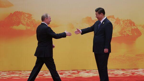 Vladimir Putin attends APEC summit - Sputnik International