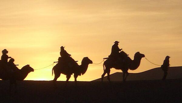 Sunrise by camel - Sputnik International
