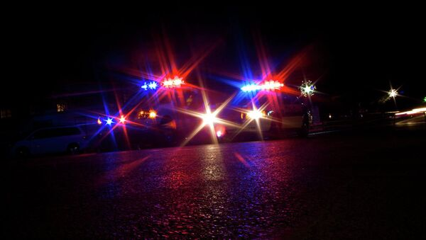 Police car lights - Sputnik International