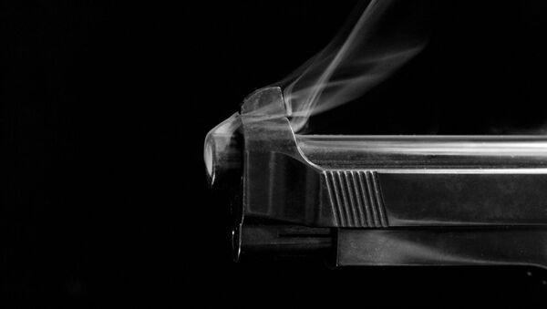 Smoking Gun - Sputnik International