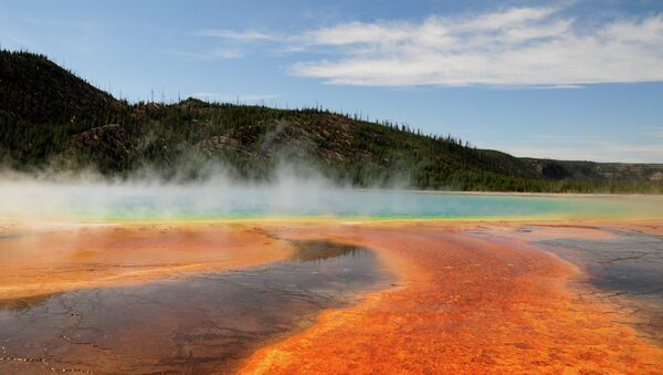 Thermal pool at Yellowstone National Park, Wyoming - Sputnik International