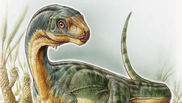 An artist's depiction shows the Chilesaurus diegosuarezi in this undated handout illustration provided by the University of Birmingham in Birmingham, Alabama on April 27, 2015 - Sputnik International