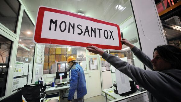An anti-GMO (genetically-modified crops) activist holds a town entrance roadsign reading Monsantox after anti-GMO activists entered a production site of US agro-chemicals giant Monsanto to protest aganinst the use of GMO crops - Sputnik International
