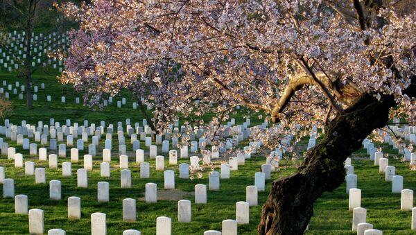 Arlington Cemetery Refuses to Bury Soldier Killed in Black Hawk Crash - Sputnik International