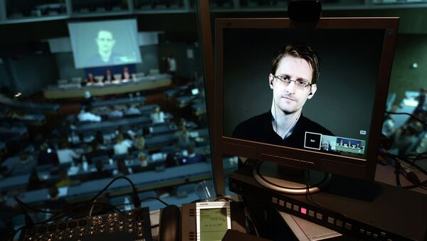 NSA former intelligence contractor Edward Snowden is seen via live video link from Russia on a computer screen during a parliamentary hearing on the subject of Improving the protection of whistleblowers, on June 23, 2015, at the Council of Europe in Strasbourg - Sputnik International
