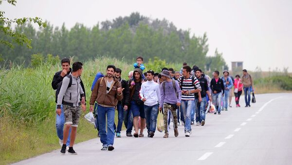 Migrants, .mostly from Syria, headed for EU member Hungary, walk in groups towards Hungary in Kanjiza, North Serbia, near the Hungarian border - Sputnik International