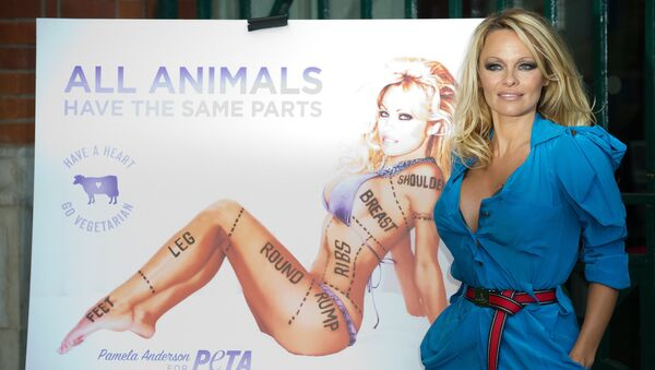 US model and actress Pamela Anderson poses during the unveiling of a new People for the Ethical Treatment of Animals (PETA) poster in Covent Garden, central London on October 24, 2010 - Sputnik International