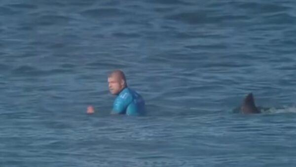 Shark Attacks Professional Surfer - Sputnik International