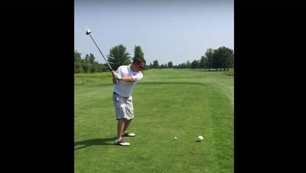 Golfer Kills Seagull With One Golf Ball - Sputnik International