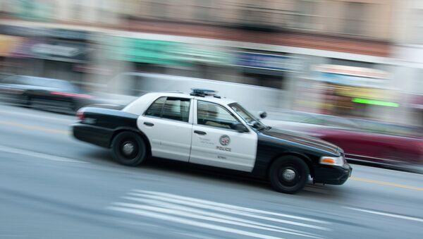 A police car in Los Angeles - Sputnik International