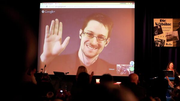 Former National Security Agency, NSA contractor and whistleblower Edward Snowden follows the 2014 Carl von Ossietzky Medal award ceremony by the International League for Human Rights via live video transmission in Berlin, Germany, Sunday Dec. 14,2014 - Sputnik International