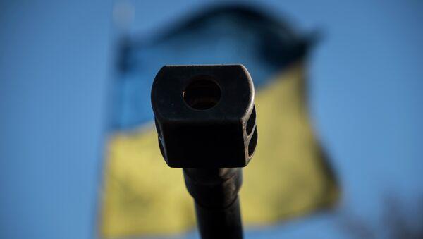 A Ukrainian flag is seen behind a canon near the village of Luhanske, eastern Ukraine, Feb. 24, 2015 - Sputnik International