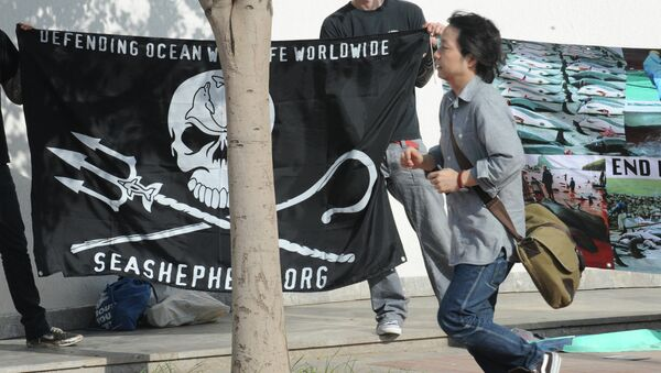 Anti-whaling militants protest on June 21, 2010 outside the venue of International Whaling Commission (IWC) meeting in Agadir - Sputnik International