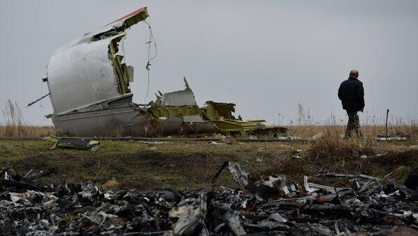 Dutch experts on Malaysian Boeing crash site - Sputnik International