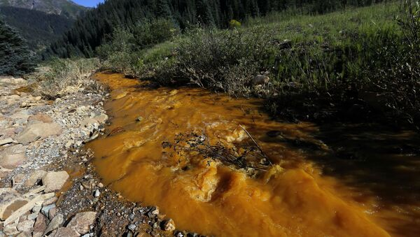 Water flows down Cement Creek just below the site of the blowout at the Gold King mine which triggered a major spill of toxic wastewater. - Sputnik International