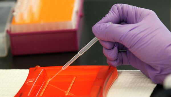 An associate scientist with InnoGenomics Technologies, works with DNA samples in their laboratory - Sputnik International