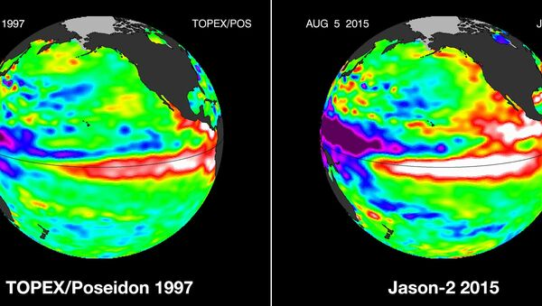 These false-color images provided by NASA satellites compare warm Pacific Ocean water temperatures from the strong El Nino that brought North America large amounts of rainfall in 1997, left, and the current El Nino as of Aug. 5, 2015, right. - Sputnik International