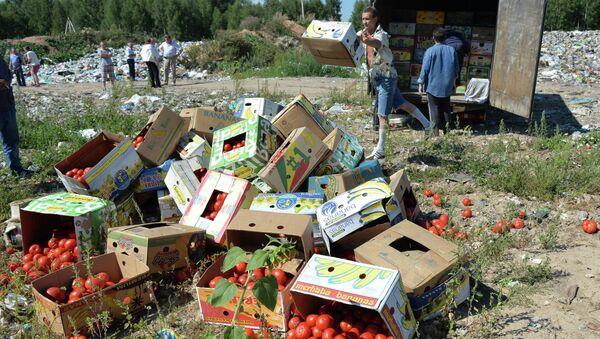 Sanctioned foods destroyed in Russia - Sputnik International