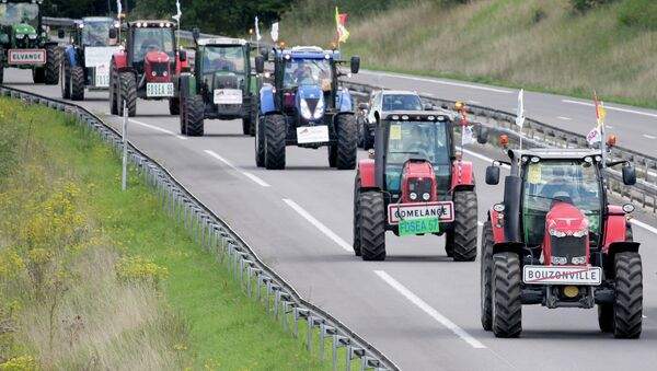 French farmers from Lorraine region drive their tractors on the A4 motorway in the Champagne-Ardenne region, eastern France, September 2, 2015 - Sputnik International