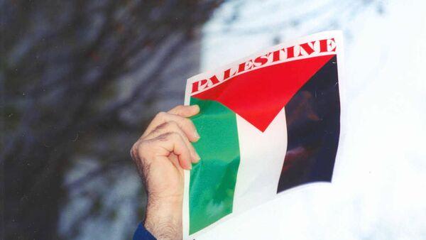 Palestine flag - Sputnik International