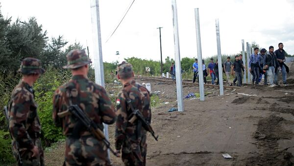 Hungarian soldiers stand guard as migrants cross at the border near Roszke, Hungary September 12, 2015 - Sputnik International