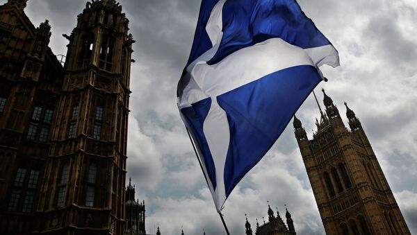 A member of public flies a giant Scottish Saltire flag outside the Houses of Parliament shortly before Scotland First Minister Nicola Sturgeon posed with newly-elected Scottish National Party (SNP) MPs during a photocall in London on 11 May 2015 - Sputnik International