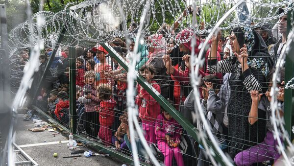 Refugees stand behind a fence at the Hungarian border with Serbia near the town of Horgos on September 16, 2015 - Sputnik International