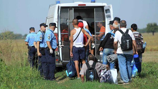 A group of migrants is gathered by Croatian police in Tovarnik, Croatia September 16, 2015 - Sputnik International