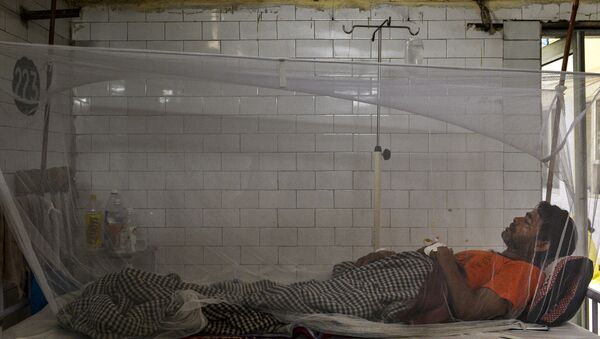 Indian patient lies in a bed covered with a mosquito net in a dengue ward of a government hospital in New Delhi - Sputnik International