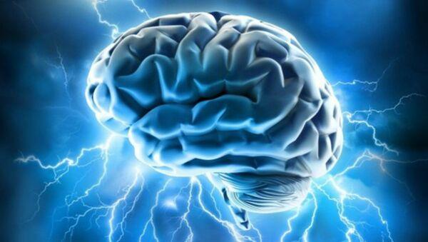 Brain power - Sputnik International