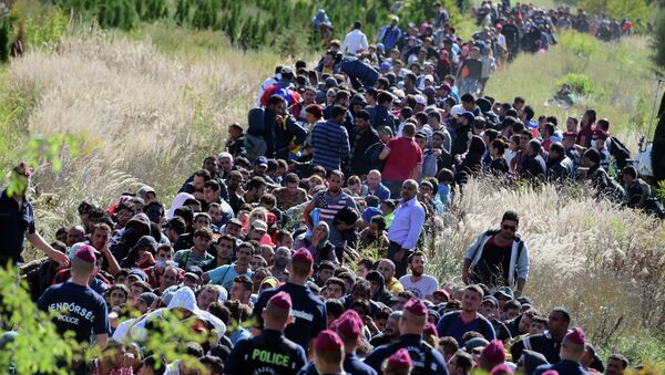 Directed by Hungarian police officers, migrants make their way through the countryside after they crossed the Hungarian-Croatian border near the village of Zakany in Hungary to continue their trip to north on September 21, 2015 - Sputnik International