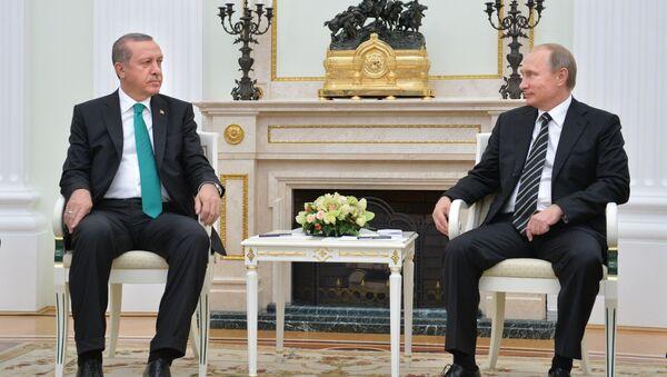 President Vladimir Putin meets with President of Turkey Recep Erdogan - Sputnik International