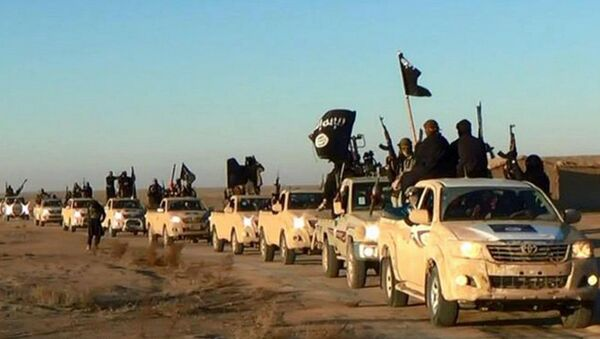 In this undated file photo released by a militant website, which has been verified and is consistent with other AP reporting, militants of the Islamic State group hold up their weapons and wave its flags on their vehicles in a convoy on a road leading to Iraq, while riding in Raqqa city in Syria - Sputnik International
