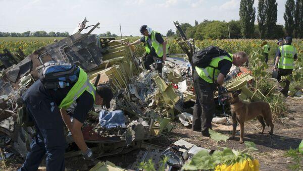Australian, Malaysian and Dutch investigators examine pieces of the downed Malaysia Airlines Flight 17 plane, near the village of Rossipne, Donetsk region, eastern Ukraine - Sputnik International
