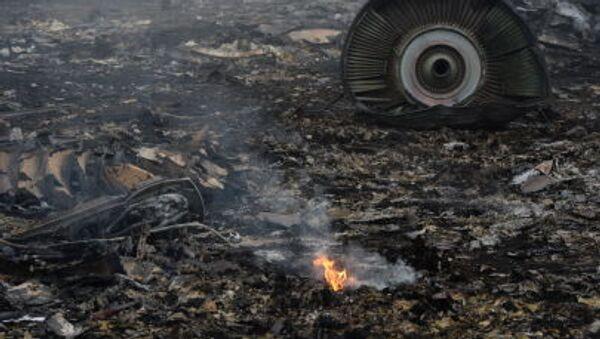Boeing 777 crash site in Donetsk - Sputnik International