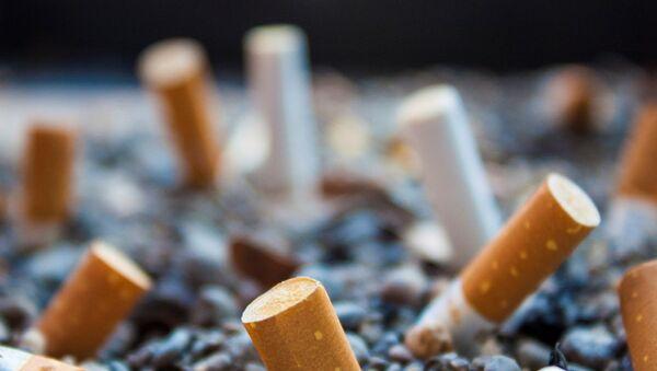Cigarette butts - Sputnik International