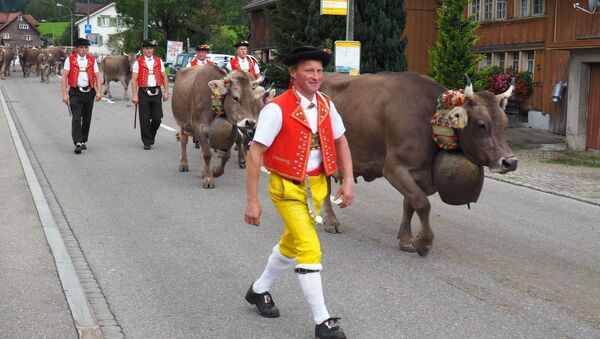 This Sept. 19, 2015 photo shows men in local costume taking part in the Swiss Alpabzug, a celebration of the descent of dairy cows and goats from high Alpine pastures, in Urnaesch, Appenzellerland, in Switzerland - Sputnik International