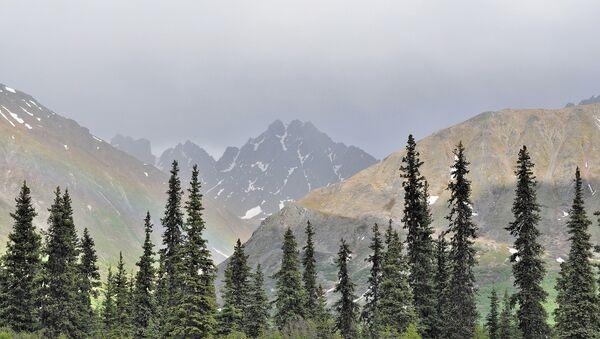 Denali National Park at the Alaska - Sputnik International