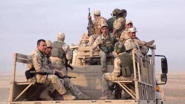 Members of the Kurdish security forces - Sputnik International