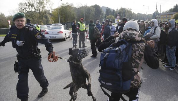 An Austrian policeman with a dog tries to maintain order after migrants left a camp on the border with Slovenia in Spielfeld, Austria, Thursday, Oct. 22, 2015 - Sputnik International