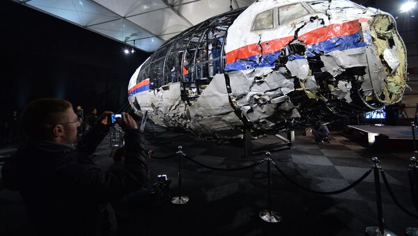 Dutch Safety Board releases report on Malaysia Airlines Flight MH17 crash - Sputnik International