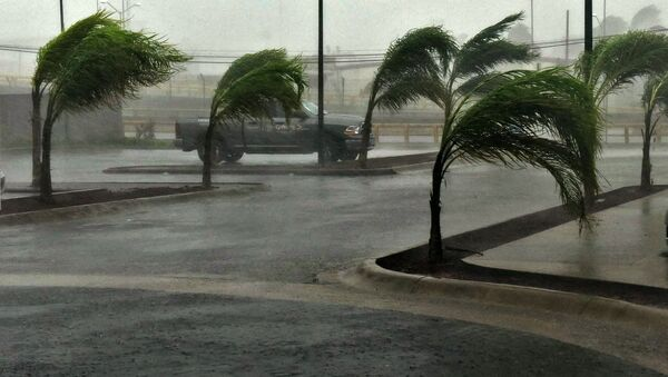 View of a street in Manzanillo, Colima state, Mexico on October 23, 2015, during hurricane Patricia - Sputnik International