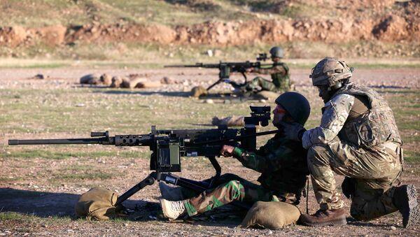 British military advisers instruct Kurdish Peshmerga fighters during a training session at a shooting range on the outskirts of Arbil, the capital of the autonomous Kurdish region of northern Iraq on November 5, 2014 - Sputnik International