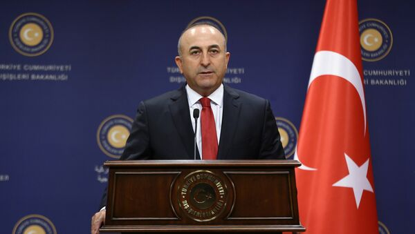 Turkish Former Foreign Minister Mevlut Cavusoglu - Sputnik International